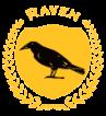 Raven Custom Homes